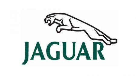 Jaguar-radio-code